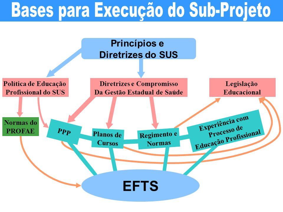 Bases para Execução do Sub-Projeto
