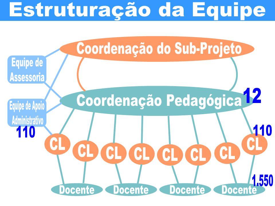 Estruturação da Equipe