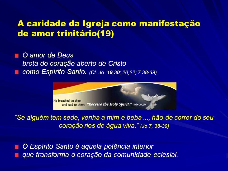 A caridade da Igreja como manifestação de amor trinitário(19)