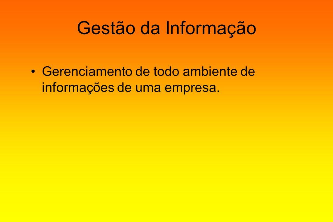 Gestão da Informação Gerenciamento de todo ambiente de informações de uma empresa.