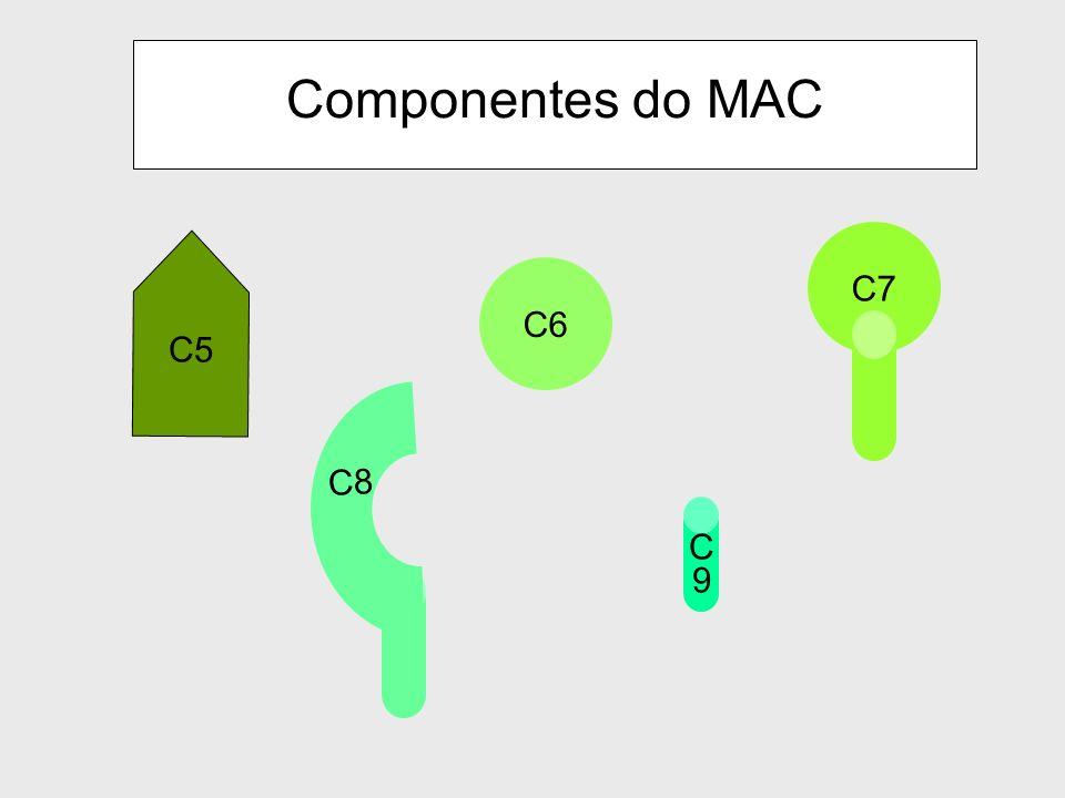 Componentes do MAC C7 C6 C5 C8 C 9