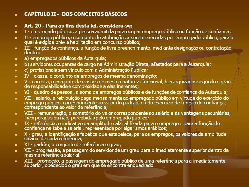 CAPÍTULO II - DOS CONCEITOS BÁSICOS