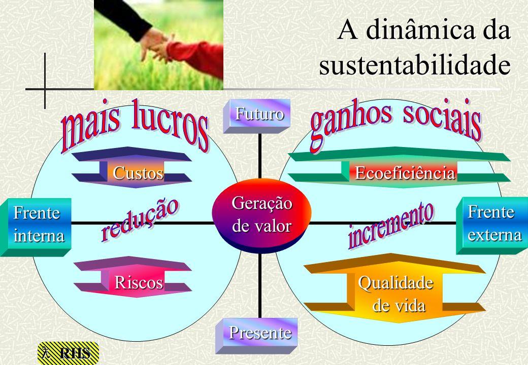 A dinâmica da sustentabilidade