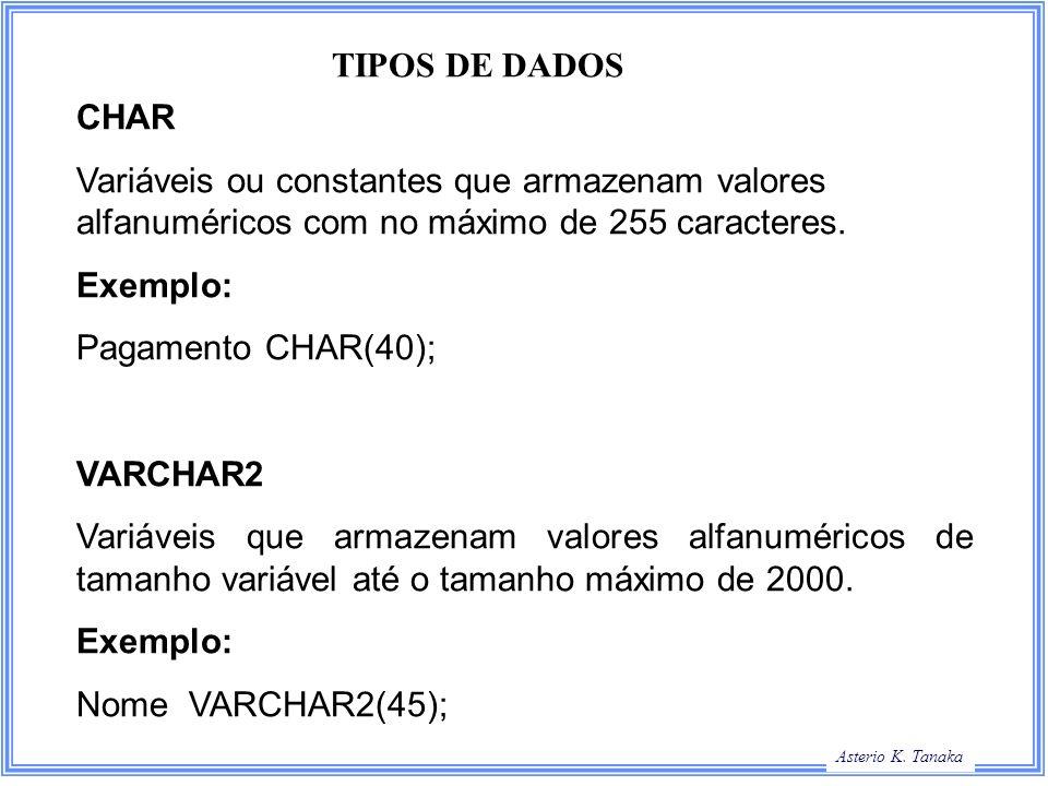 TIPOS DE DADOSCHAR. Variáveis ou constantes que armazenam valores alfanuméricos com no máximo de 255 caracteres.