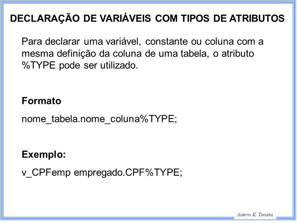 DECLARAÇÃO DE VARIÁVEIS COM TIPOS DE ATRIBUTOS