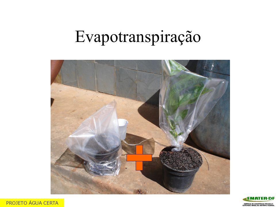 Evapotranspiração PROJETO ÁGUA CERTA