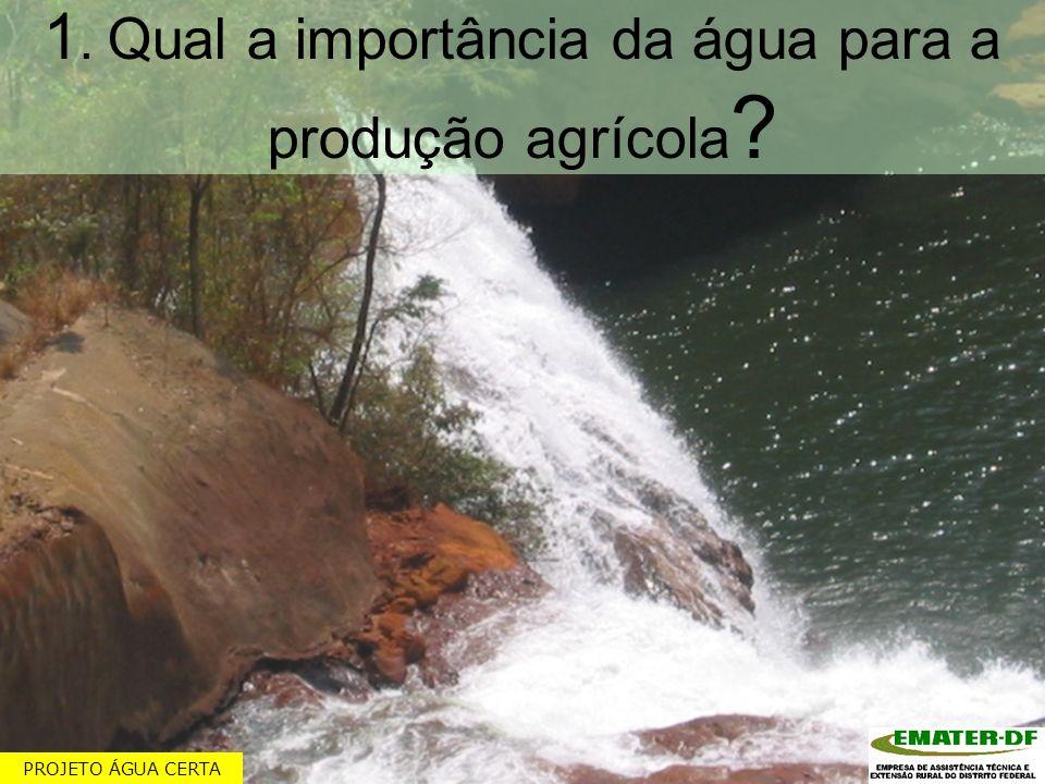 1. Qual a importância da água para a produção agrícola