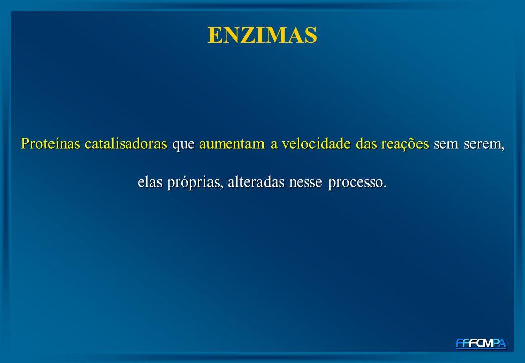 ENZIMAS Proteínas catalisadoras que aumentam a velocidade das reações sem serem, elas próprias, alteradas nesse processo.