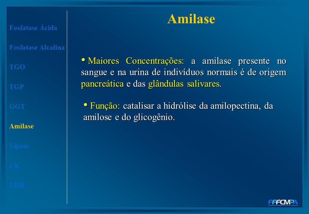 Amilase Fosfatase Ácida. Fosfatase Alcalina. TGO. TGP. GGT. Amilase. Lipase. CK. LDH.