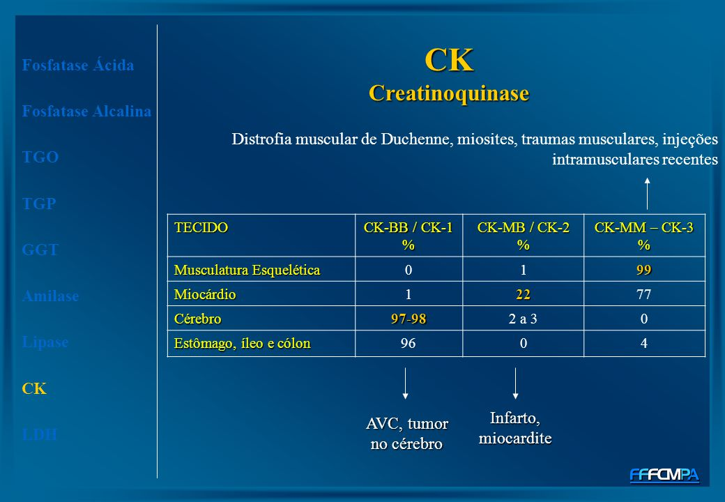 CK Creatinoquinase Fosfatase Ácida Fosfatase Alcalina TGO TGP