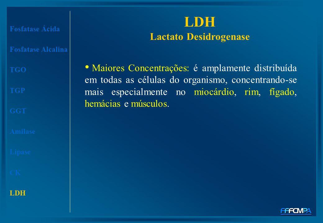 LDH Lactato Desidrogenase