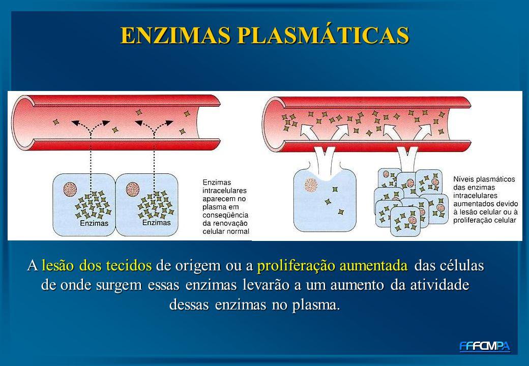 ENZIMAS PLASMÁTICAS