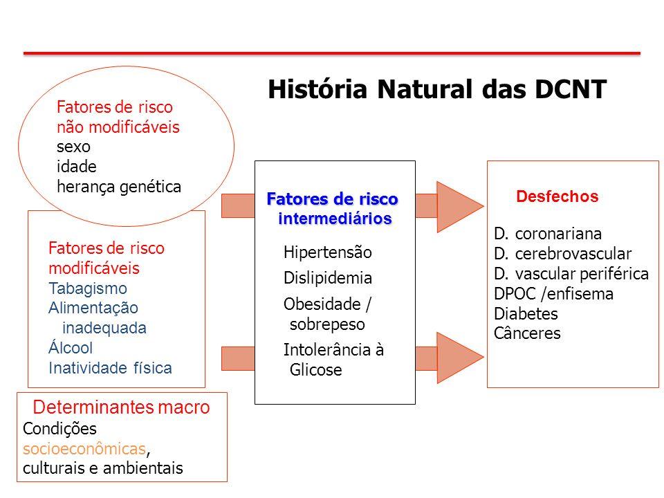 História Natural das DCNT