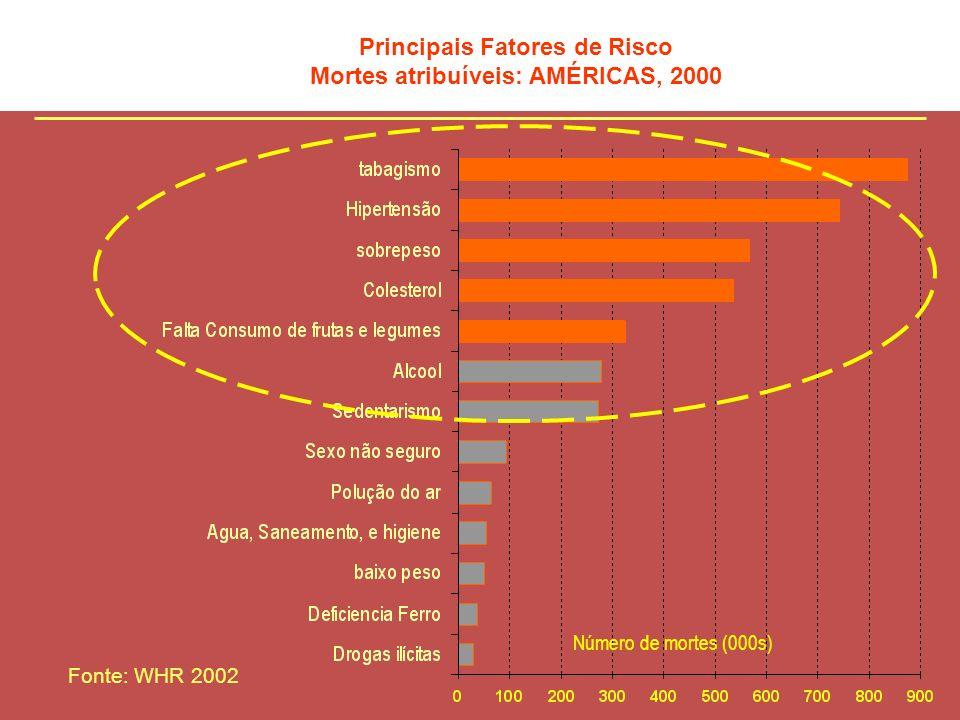 Principais Fatores de Risco Mortes atribuíveis: AMÉRICAS, 2000