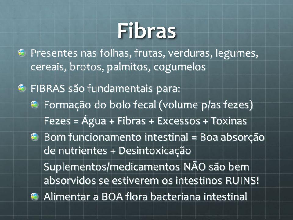 Fibras Presentes nas folhas, frutas, verduras, legumes, cereais, brotos, palmitos, cogumelos. FIBRAS são fundamentais para: