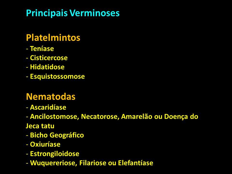 Principais Verminoses Platelmintos