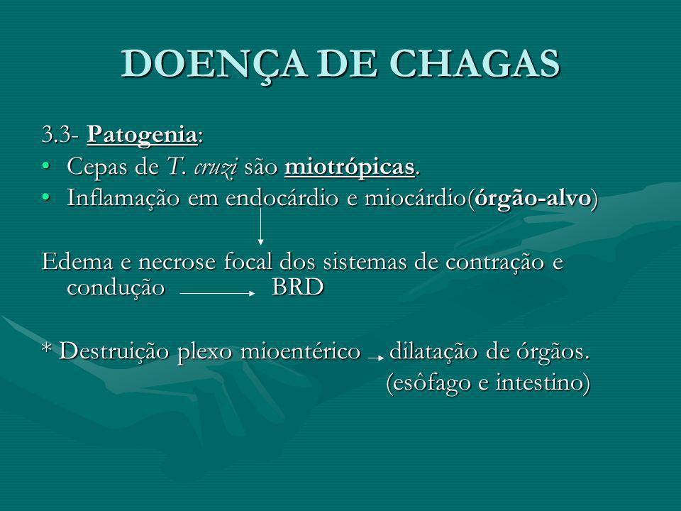 DOENÇA DE CHAGAS 3.3- Patogenia: Cepas de T. cruzi são miotrópicas.