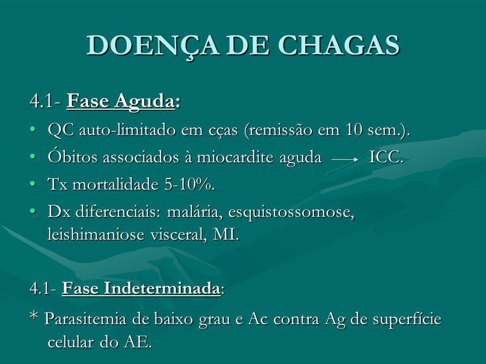 DOENÇA DE CHAGAS 4.1- Fase Aguda: