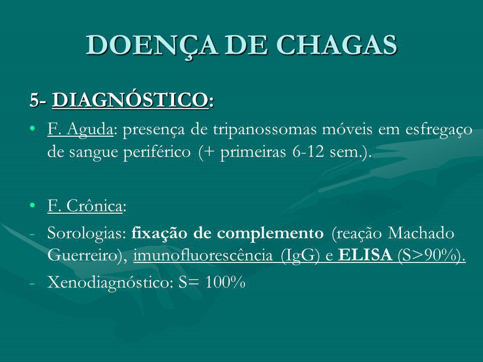 DOENÇA DE CHAGAS 5- DIAGNÓSTICO:
