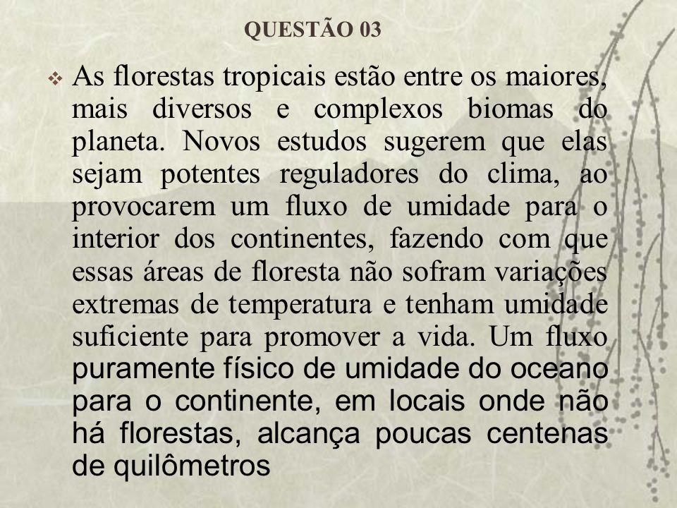 QUESTÃO 03