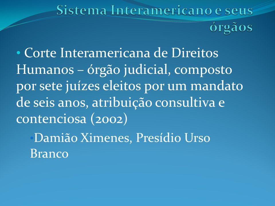 Sistema Interamericano e seus órgãos