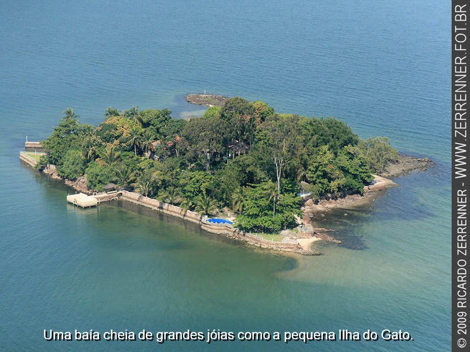 Uma baía cheia de grandes jóias como a pequena Ilha do Gato.