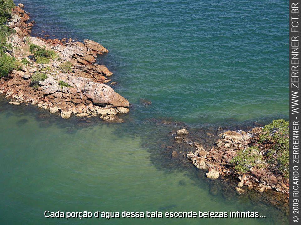 Cada porção d'água dessa baía esconde belezas infinitas...