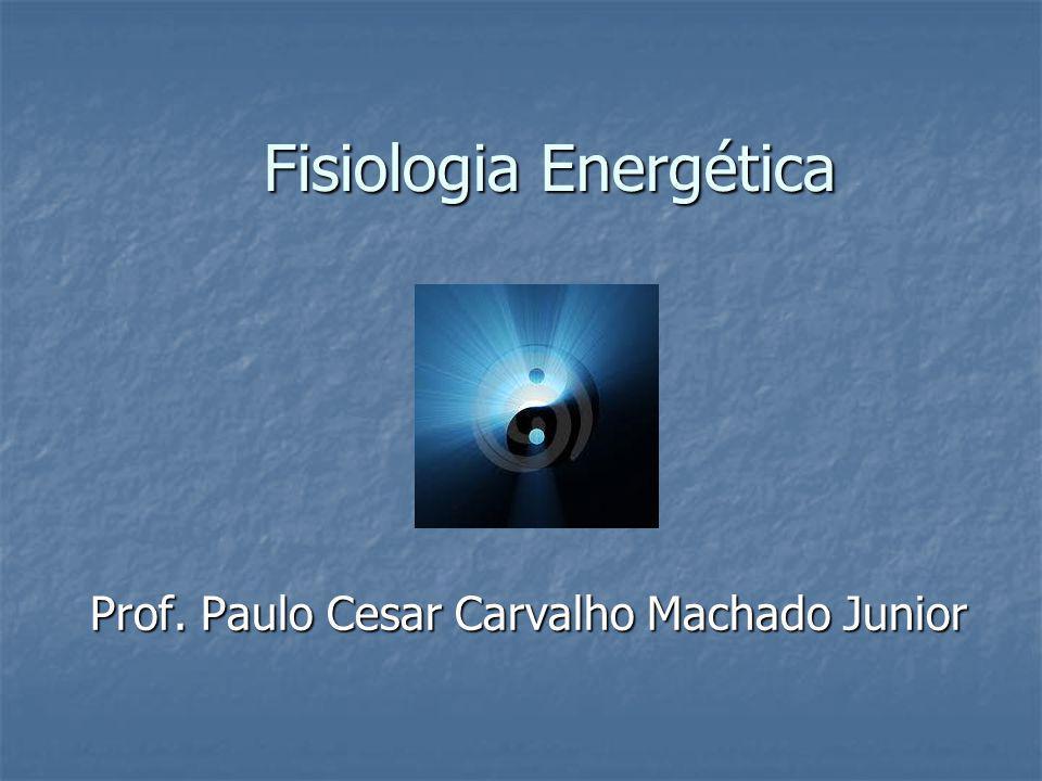 Fisiologia Energética