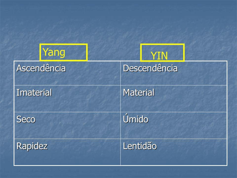 Yang YIN Ascendência Descendência Imaterial Material Seco Úmido