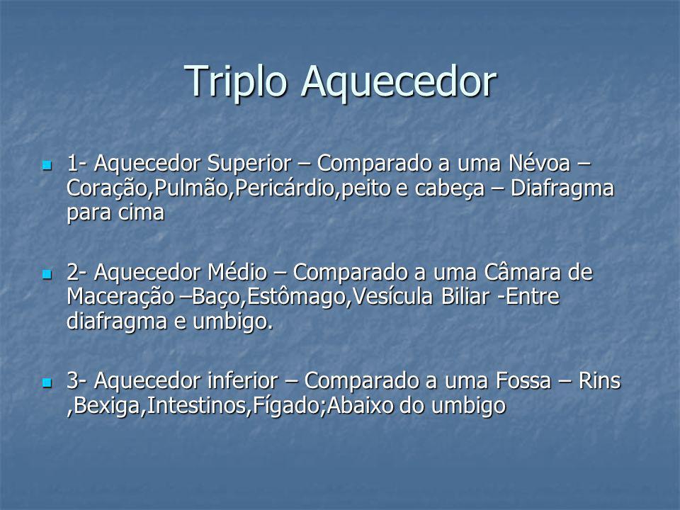 Triplo Aquecedor1- Aquecedor Superior – Comparado a uma Névoa – Coração,Pulmão,Pericárdio,peito e cabeça – Diafragma para cima.
