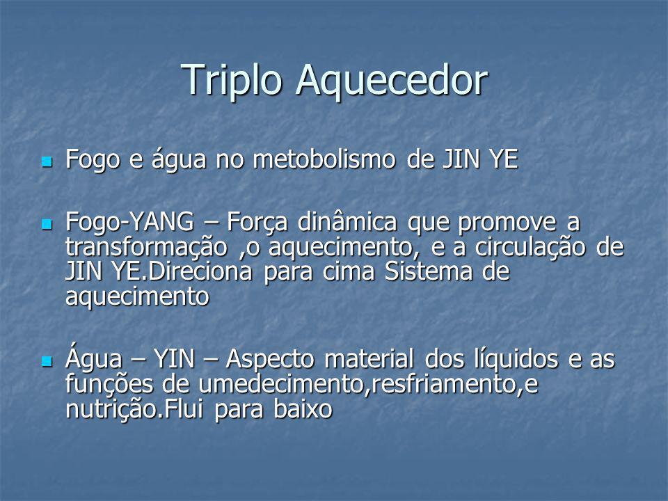 Triplo Aquecedor Fogo e água no metobolismo de JIN YE
