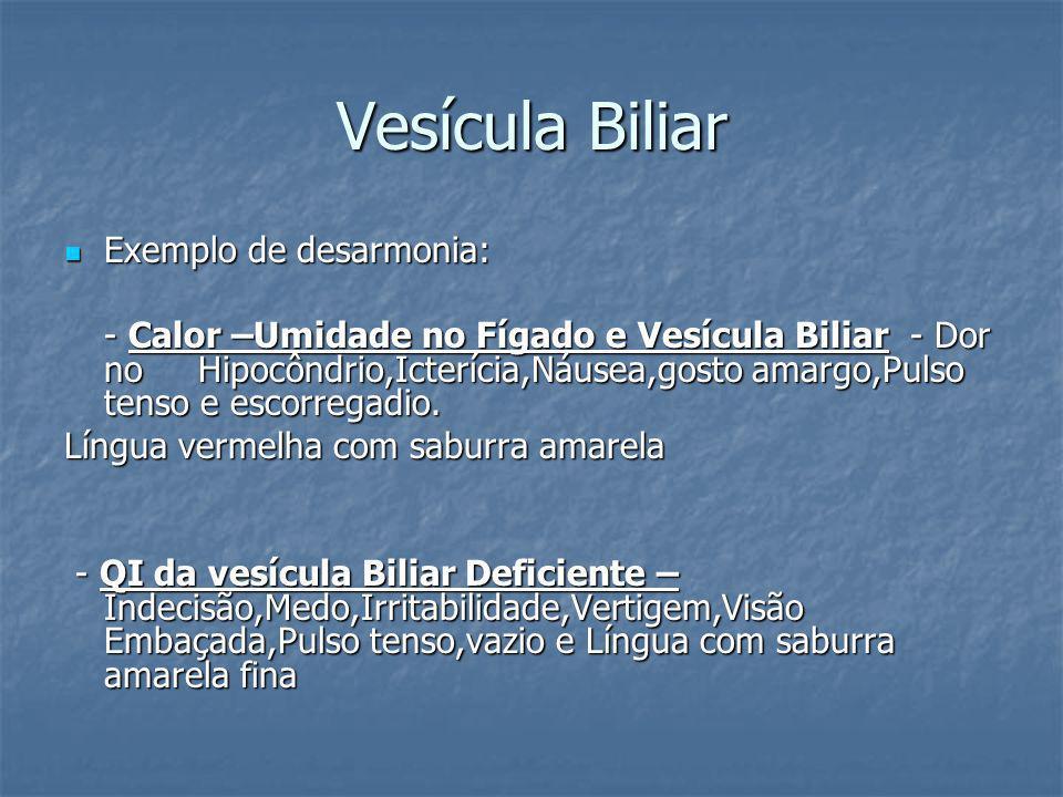 Vesícula Biliar Exemplo de desarmonia: