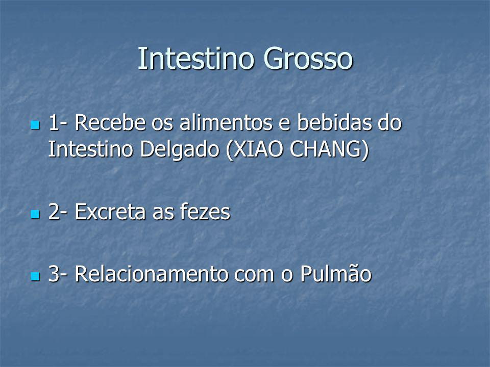 Intestino Grosso1- Recebe os alimentos e bebidas do Intestino Delgado (XIAO CHANG) 2- Excreta as fezes.