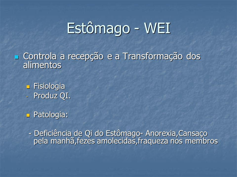 Estômago - WEI Controla a recepção e a Transformação dos alimentos