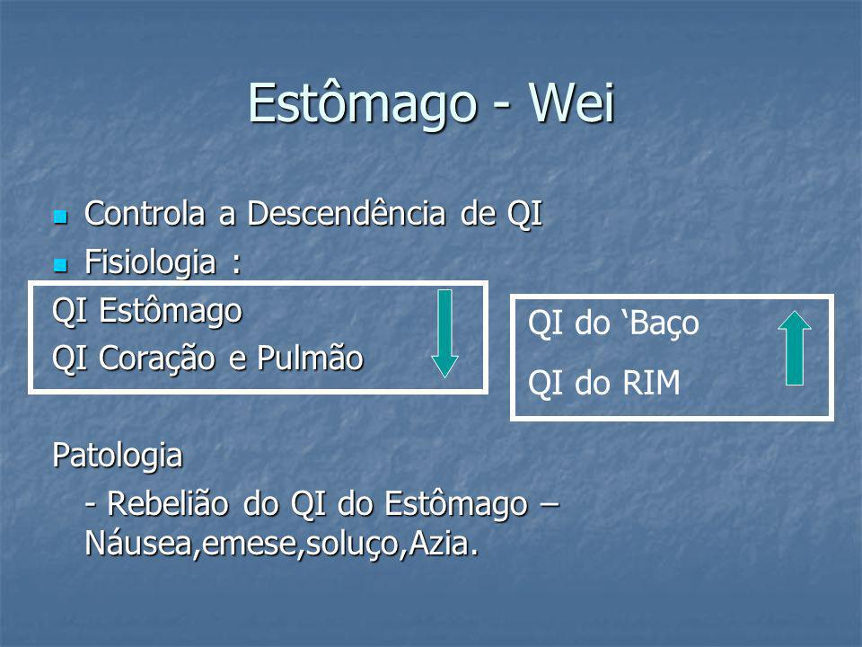 Estômago - Wei Controla a Descendência de QI Fisiologia : QI Estômago