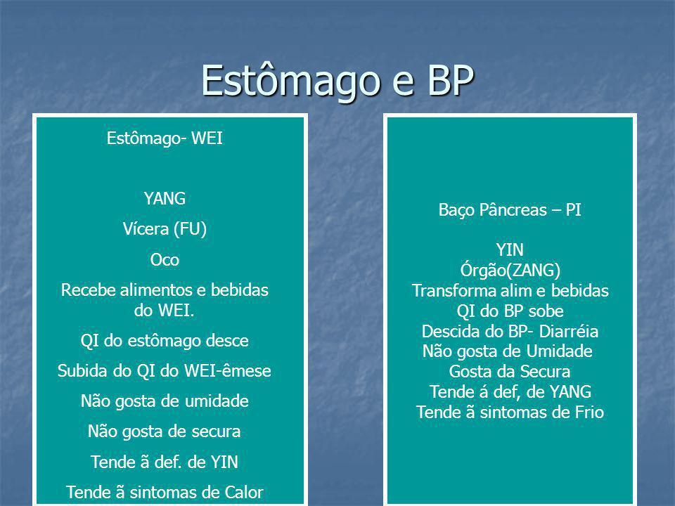 Estômago e BP Estômago- WEI YANG Baço Pâncreas – PI Vícera (FU) YIN