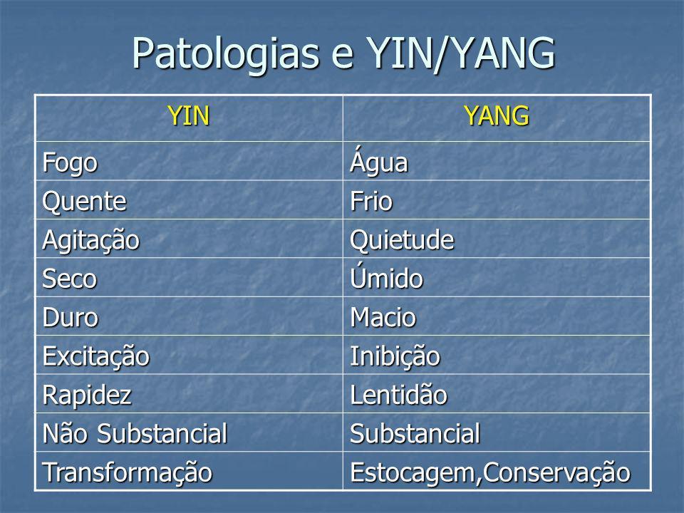 Patologias e YIN/YANG YIN YANG Fogo Água Quente Frio Agitação Quietude