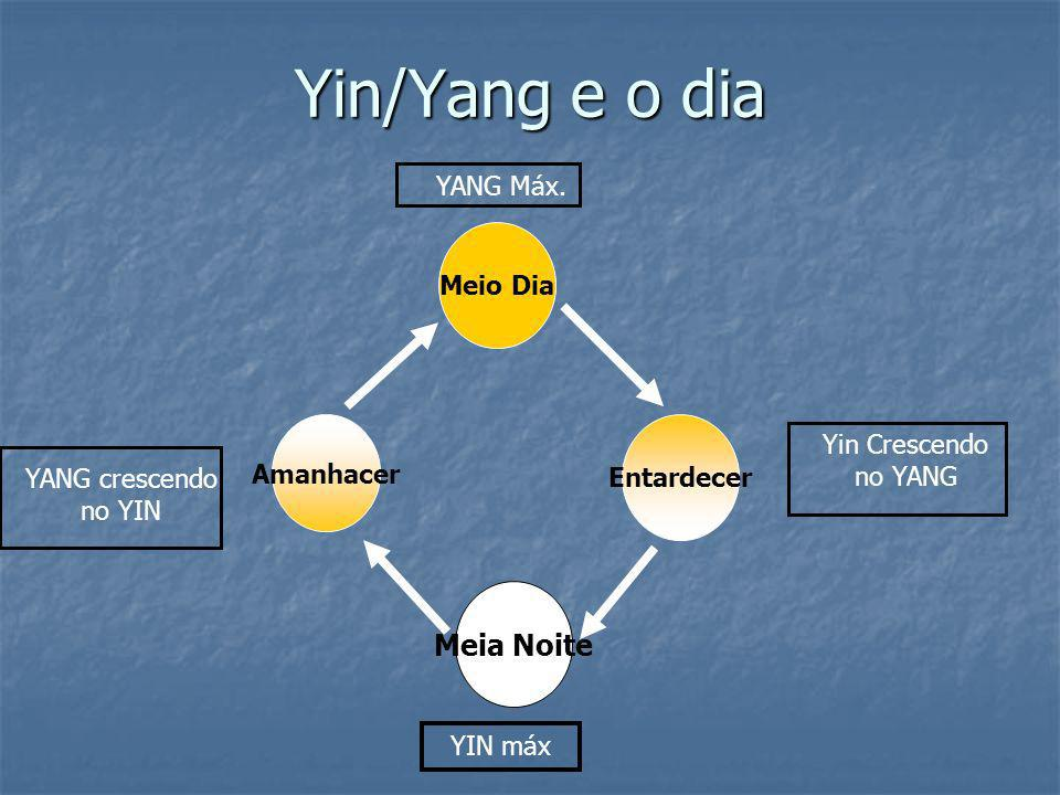 Yin/Yang e o dia Meia Noite YANG Máx. Meio Dia Yin Crescendo no YANG