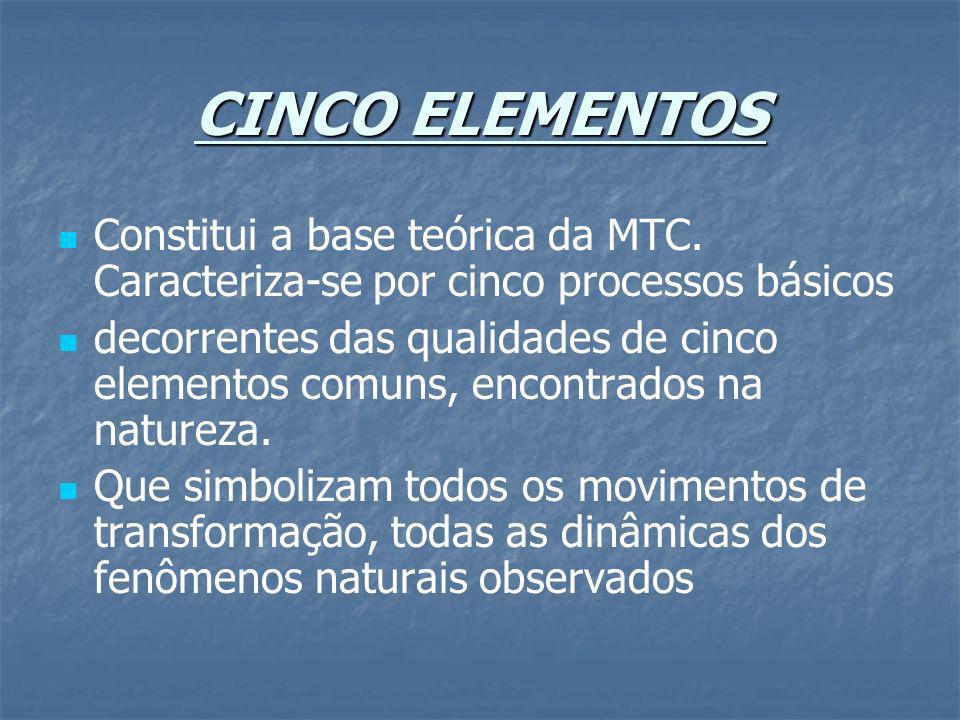 CINCO ELEMENTOS Constitui a base teórica da MTC. Caracteriza-se por cinco processos básicos.