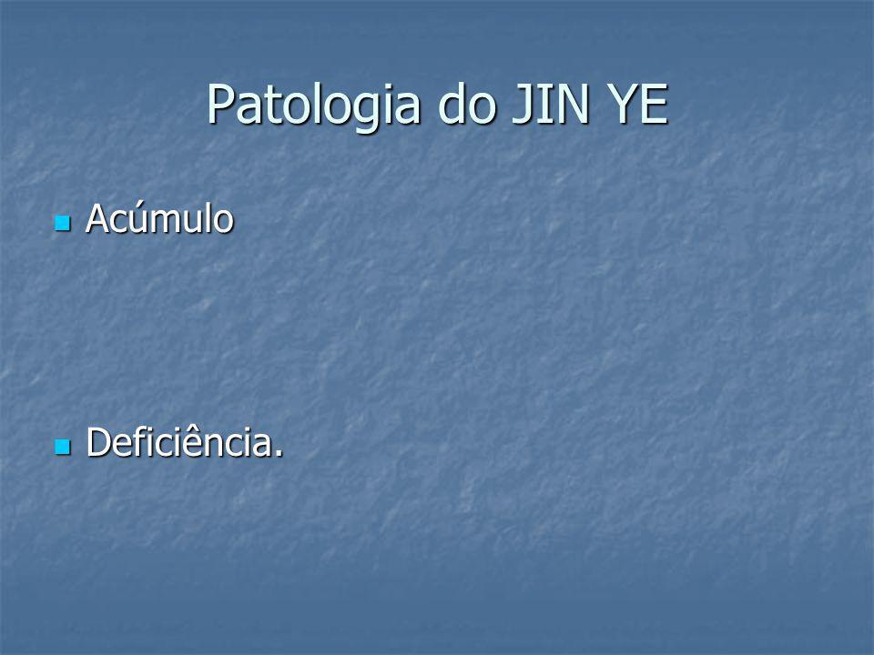Patologia do JIN YE Acúmulo Deficiência.