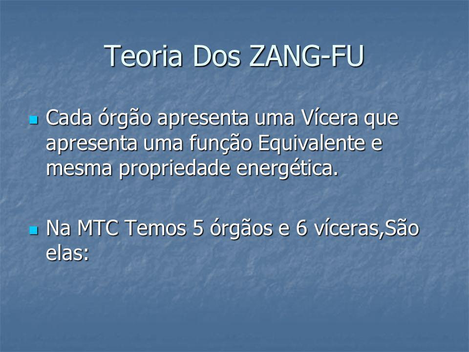 Teoria Dos ZANG-FU Cada órgão apresenta uma Vícera que apresenta uma função Equivalente e mesma propriedade energética.