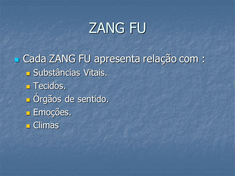 ZANG FU Cada ZANG FU apresenta relação com : Substâncias Vitais.