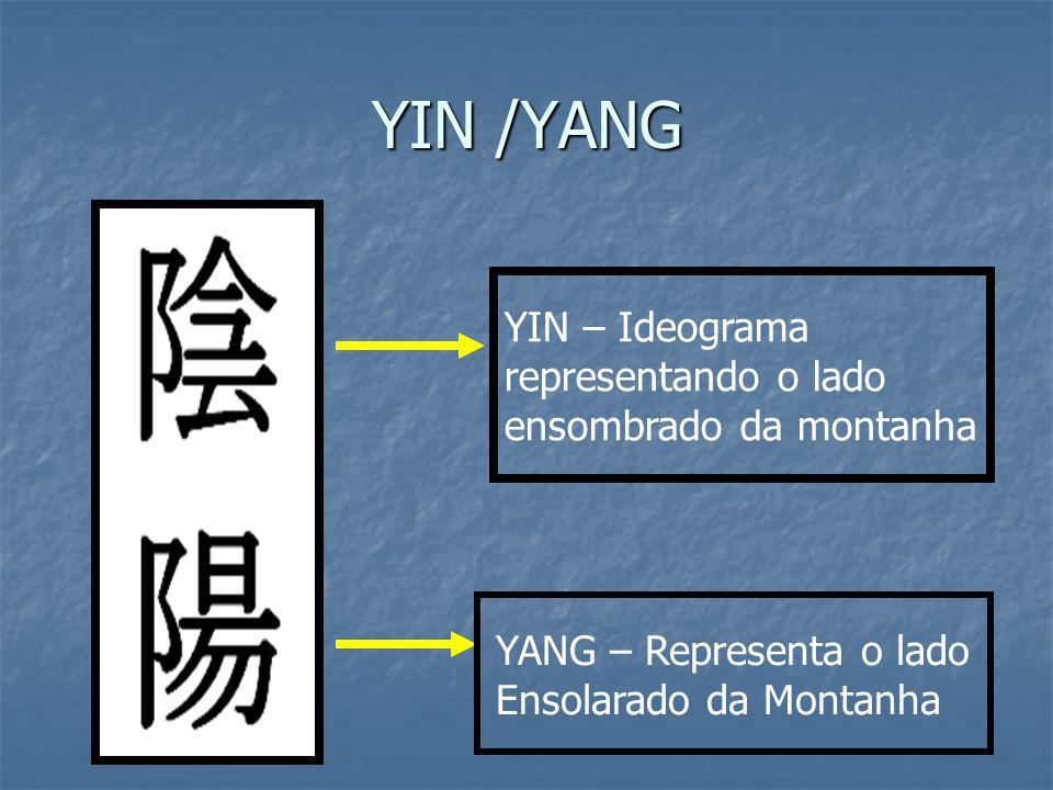 YIN /YANG YIN – Ideograma representando o lado ensombrado da montanha