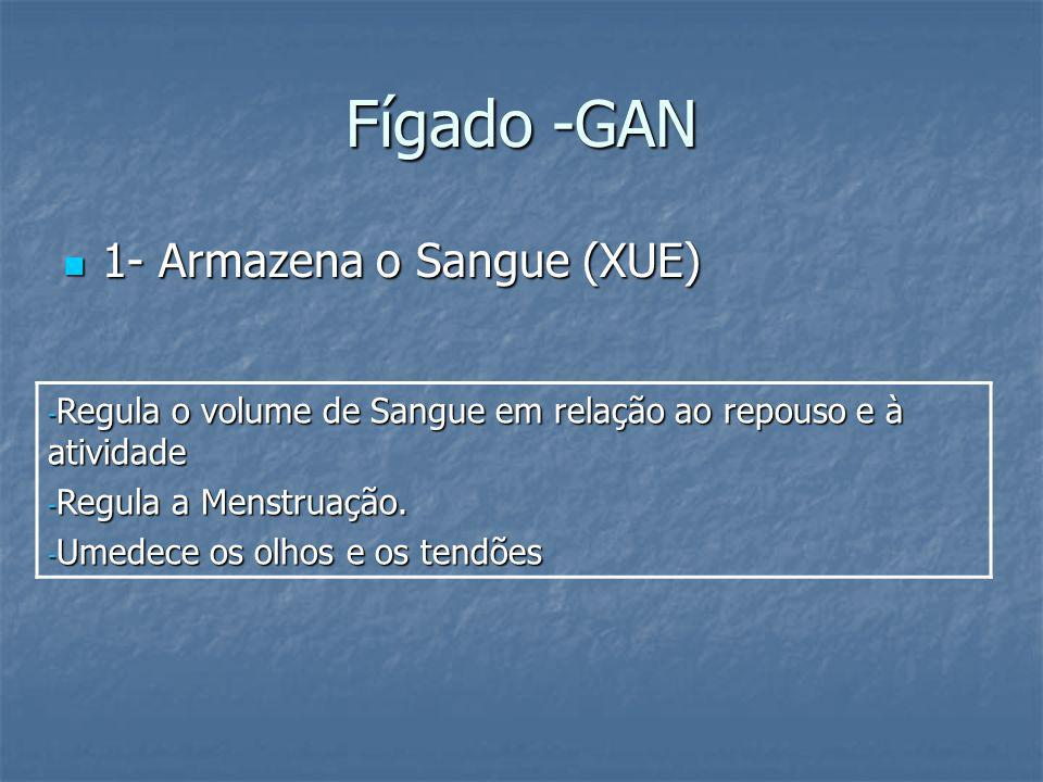 Fígado -GAN 1- Armazena o Sangue (XUE)