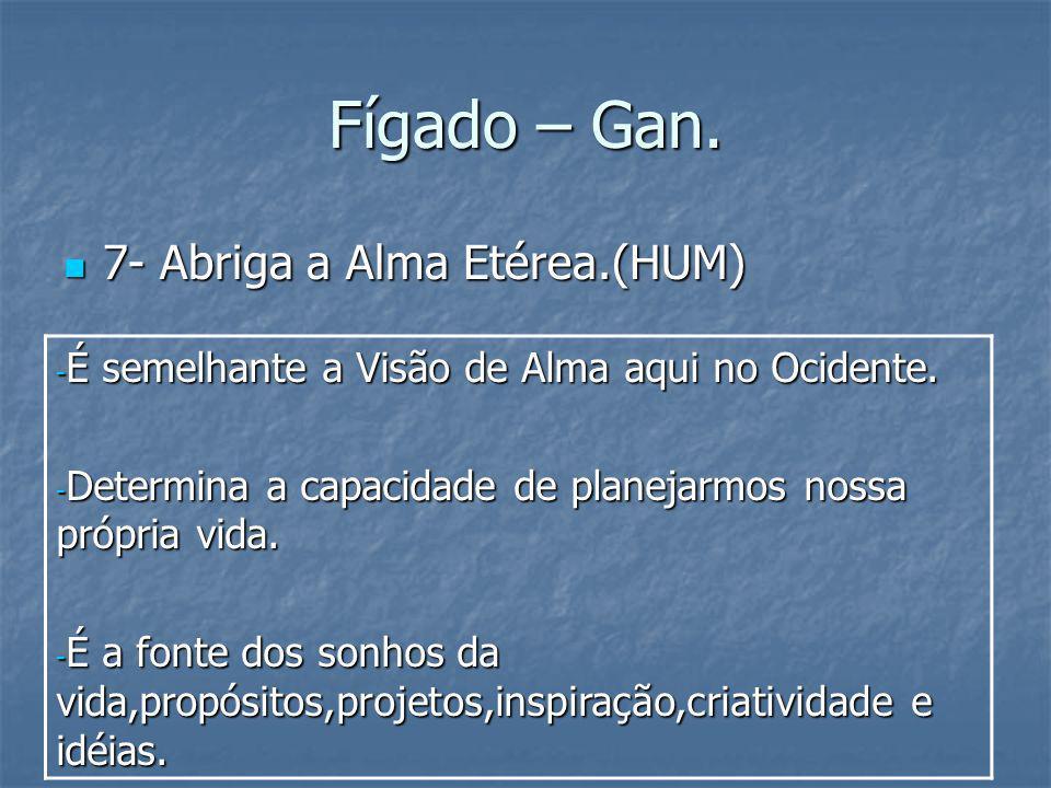 Fígado – Gan. 7- Abriga a Alma Etérea.(HUM)