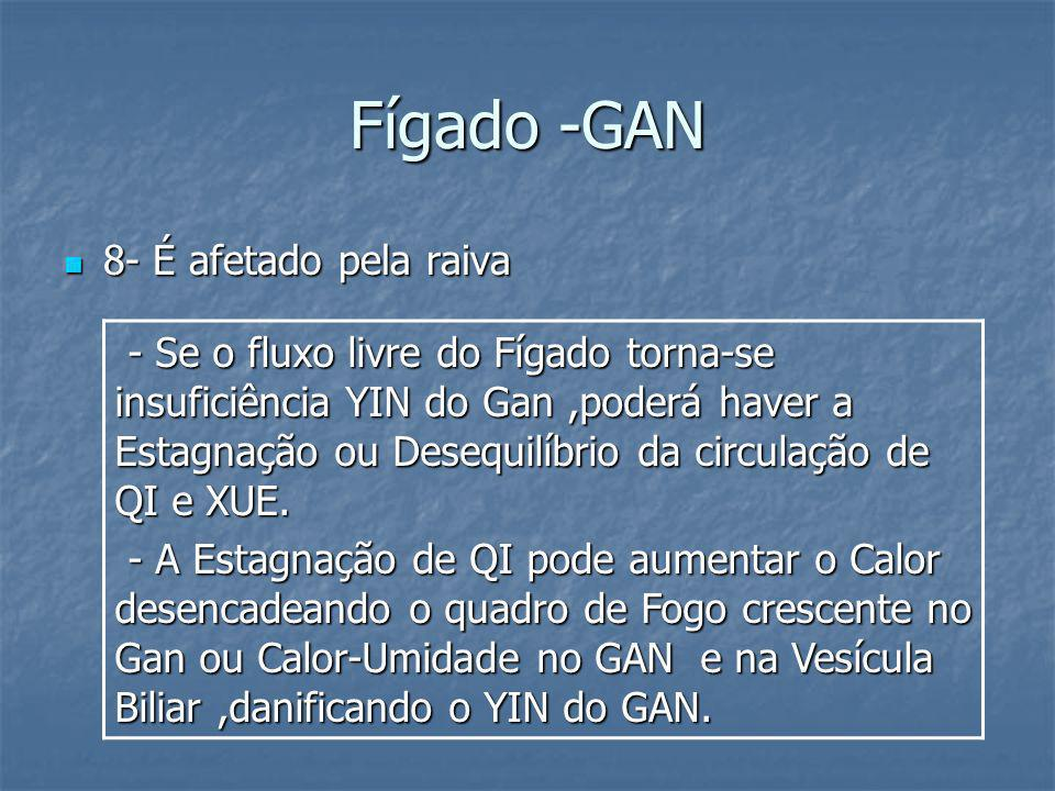 Fígado -GAN8- É afetado pela raiva.