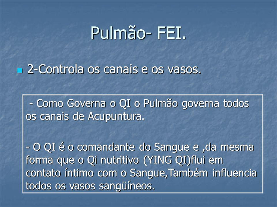 Pulmão- FEI. 2-Controla os canais e os vasos.