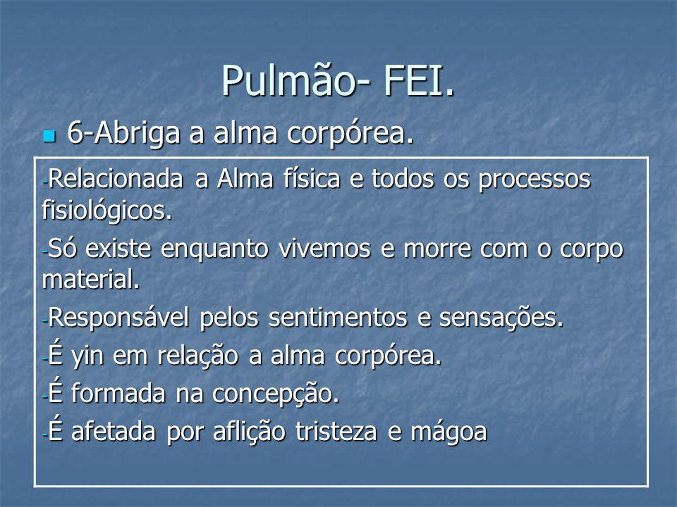 Pulmão- FEI. 6-Abriga a alma corpórea.