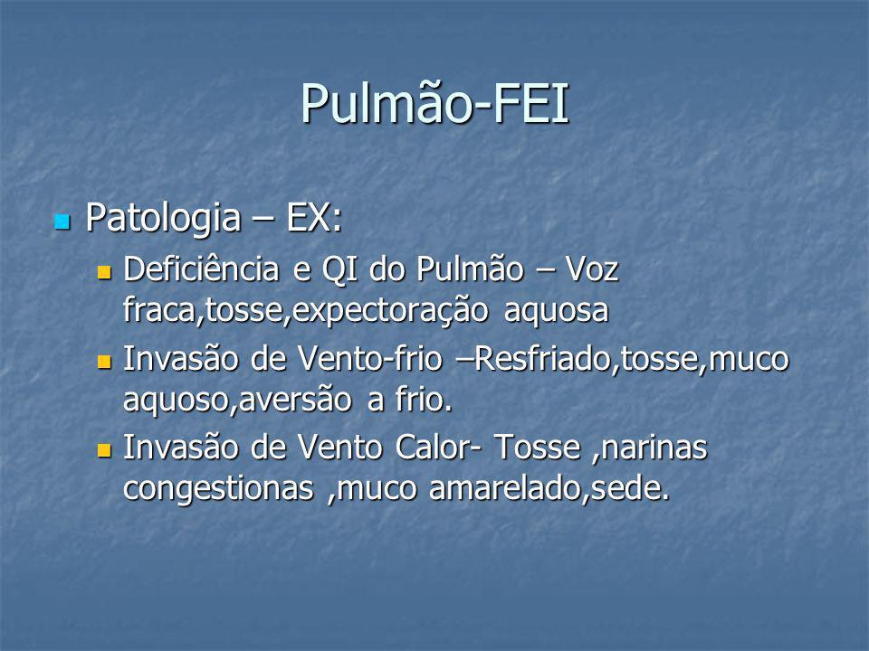 Pulmão-FEI Patologia – EX: