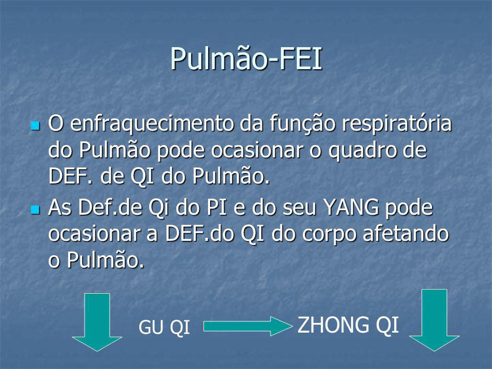 Pulmão-FEIO enfraquecimento da função respiratória do Pulmão pode ocasionar o quadro de DEF. de QI do Pulmão.